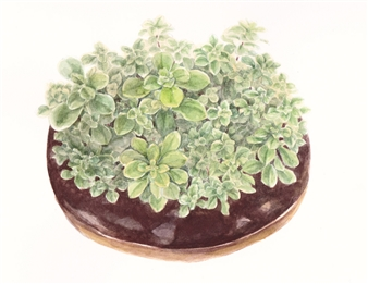 Charmaine Nadine Osaerang - Lush Green Chocolate Donut Watercolor on Paper, Paintings