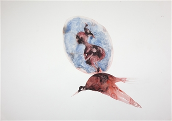 Kate Walters - Bird with Boy Ghost in Lapis Watercolor on Paper, Paintings
