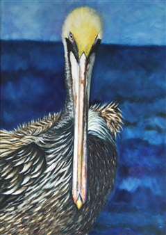 Pamela Sullivan - Pelican Oil on Canvas, Paintings