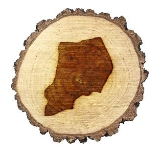 Uganda Deforestation