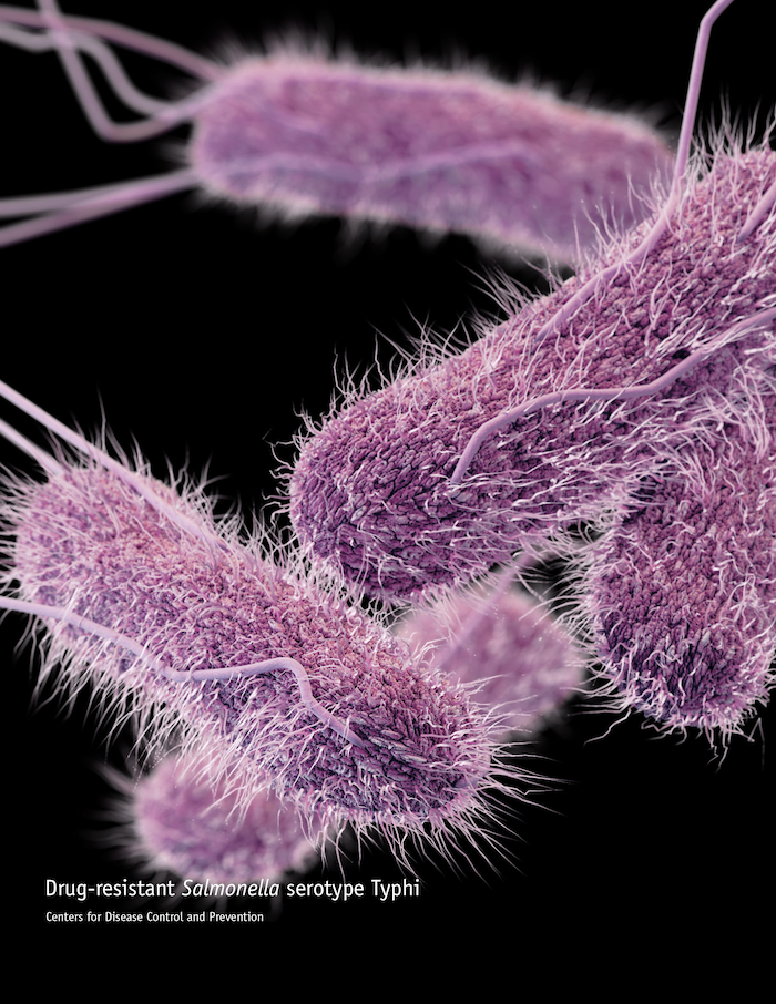 Study Outlines Machine-Based Model for Identifying Drug-Resistant Bacteria