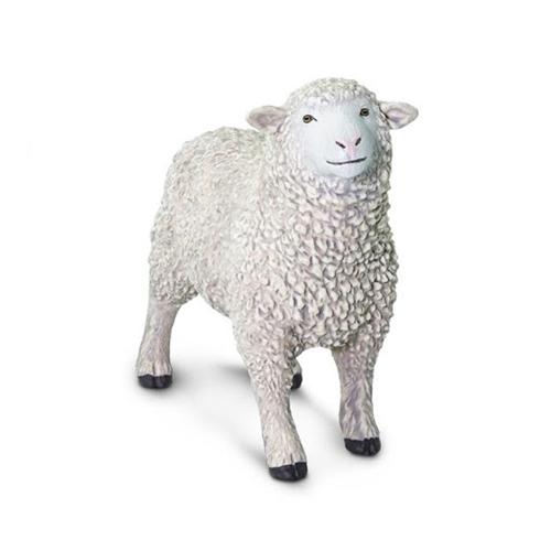 SHEEP OVEJA 162429