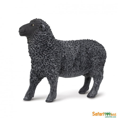 SAFARI FARM-BLACK SHEEP 162229