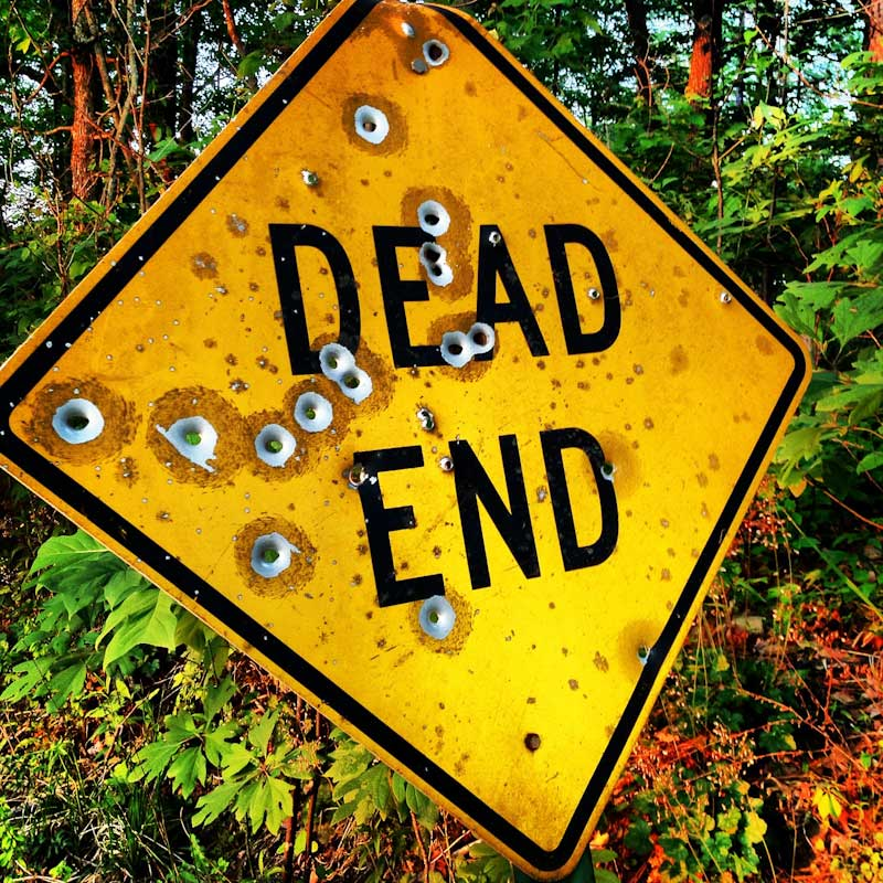 A dead end sign with bullet holes in the woods.