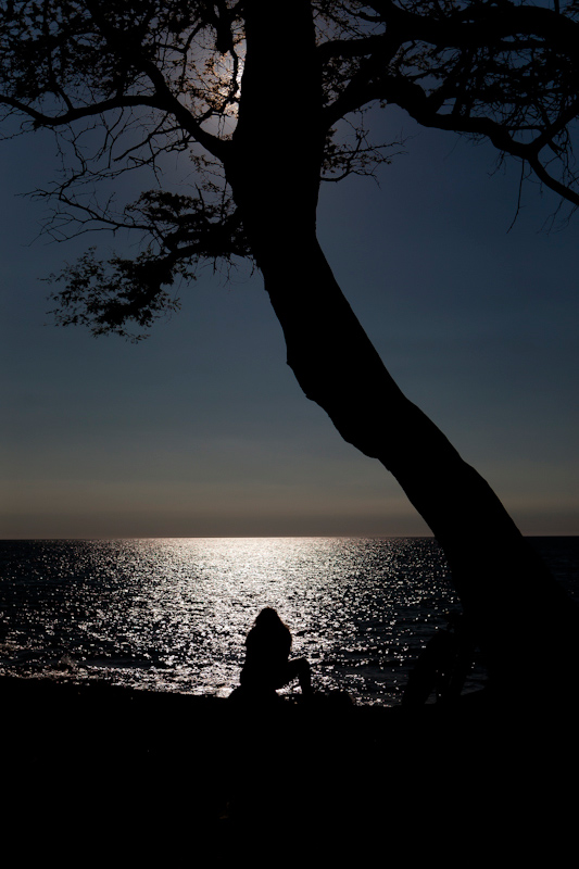 The silhouette of a woman gazes over the Pacific Ocean beneath a tree.