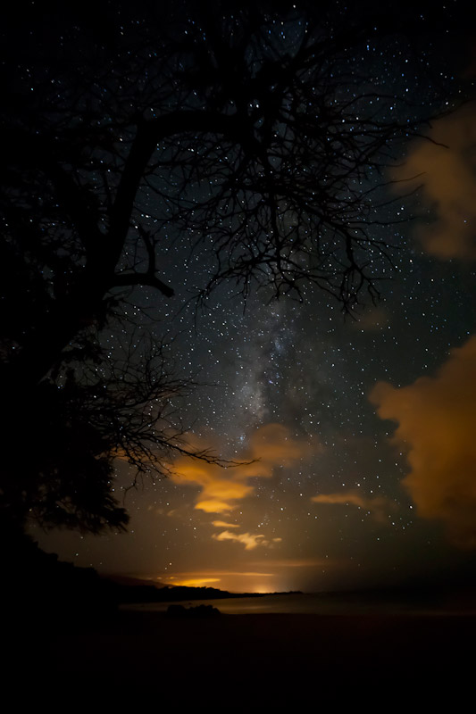 Milky way seen through the clouds beneath the silhouette of a a tree.