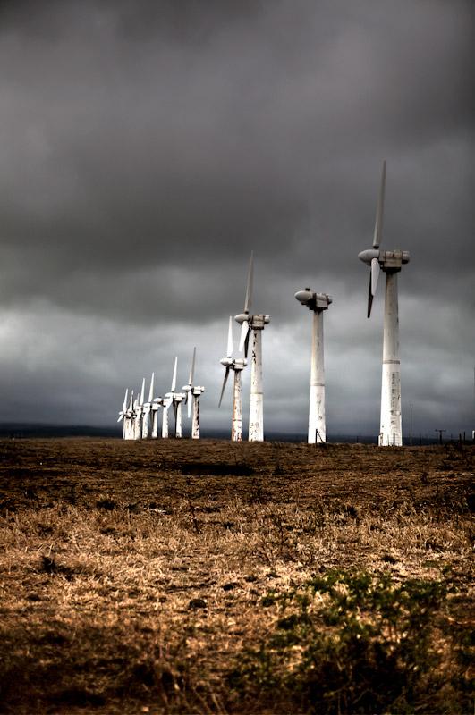 An abandoned wind turbine farm.