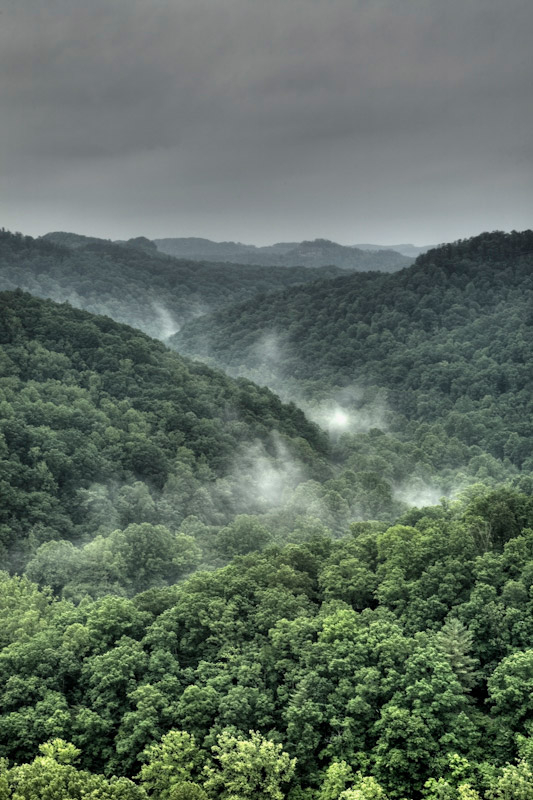 Fog rolls through the RRG just before a storm.
