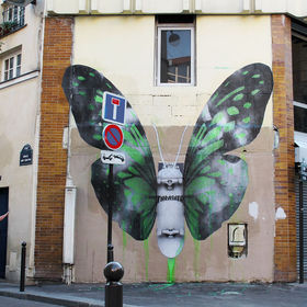 Ludo in Paris: Butterfly
