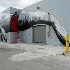 Roa à Miami