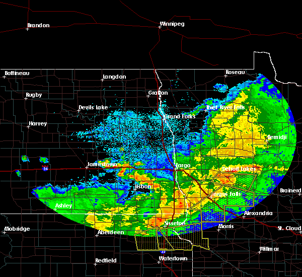 Radar Image for Severe Thunderstorms near Fergus Falls, MN at 6/6/2018 1:54 AM CDT