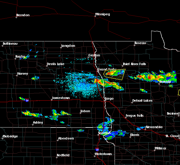 Radar Image for Severe Thunderstorms near Red Lake Falls, MN at 6/28/2018 1:31 PM CDT