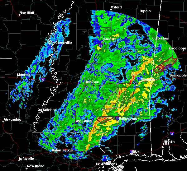 Radar Image for Severe Thunderstorms near Lauderdale, MS at 1/19/2019 9:51 AM CST