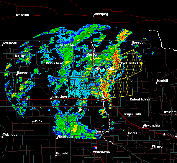 Radar Image for Severe Thunderstorms near Thief River Falls, MN at 6/8/2019 2:29 PM CDT