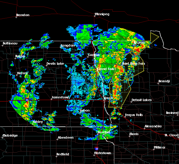 Radar Image for Severe Thunderstorms near Thief River Falls, MN at 6/8/2019 3:30 PM CDT