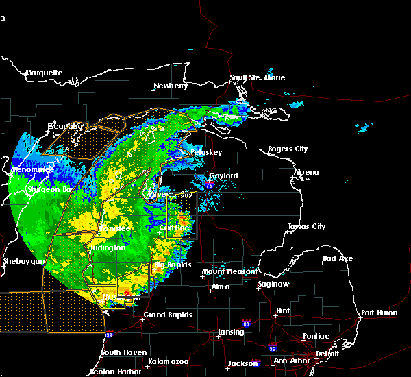 Radar Image for Severe Thunderstorms near South Boardman, MI at 7/20/2019 1:21 AM EDT