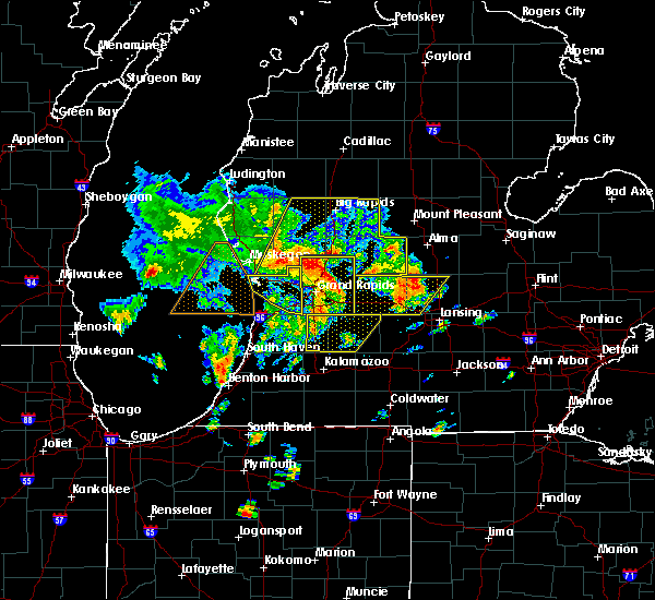 Radar Image for Severe Thunderstorms near Otsego, MI at 6/10/2020 12:28 PM EDT
