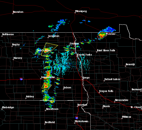 Radar Image for Severe Thunderstorms near Roseau, MN at 6/17/2020 6:10 PM CDT