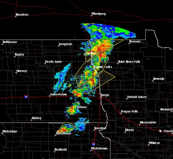 Radar Image for Severe Thunderstorms near Badger, MN at 6/17/2020 8:29 PM CDT