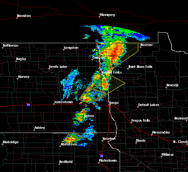 Radar Image for Severe Thunderstorms near Thief River Falls, MN at 6/17/2020 8:42 PM CDT