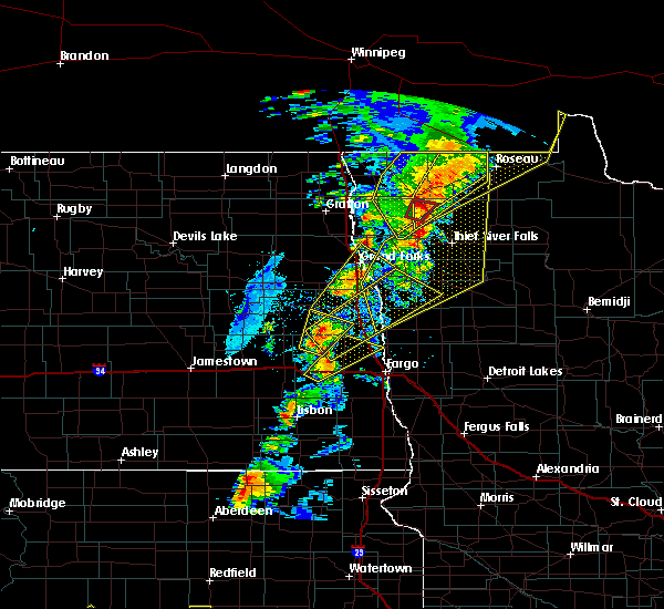 Radar Image for Severe Thunderstorms near Thief River Falls, MN at 6/17/2020 9:12 PM CDT