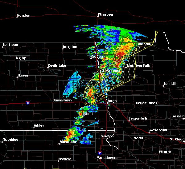 Radar Image for Severe Thunderstorms near Badger, MN at 6/17/2020 9:17 PM CDT