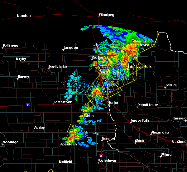 Radar Image for Severe Thunderstorms near Roseau, MN at 6/17/2020 9:38 PM CDT