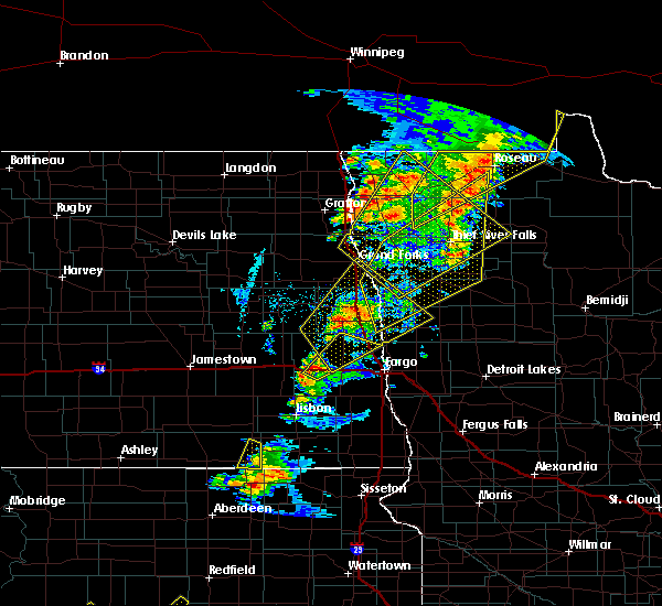 Radar Image for Severe Thunderstorms near Roseau, MN at 6/17/2020 9:46 PM CDT