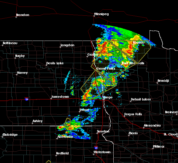 Radar Image for Severe Thunderstorms near Thief River Falls, MN at 6/17/2020 9:58 PM CDT