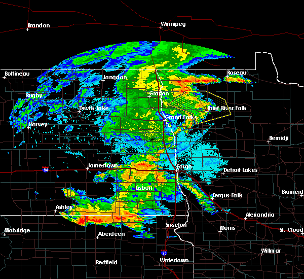 Radar Image for Severe Thunderstorms near Badger, MN at 7/24/2020 11:28 PM CDT