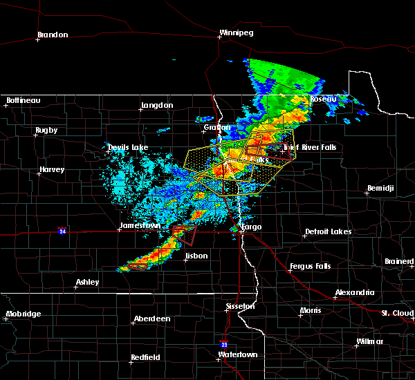 Radar Image for Severe Thunderstorms near Thief River Falls, MN at 8/9/2020 2:27 PM CDT