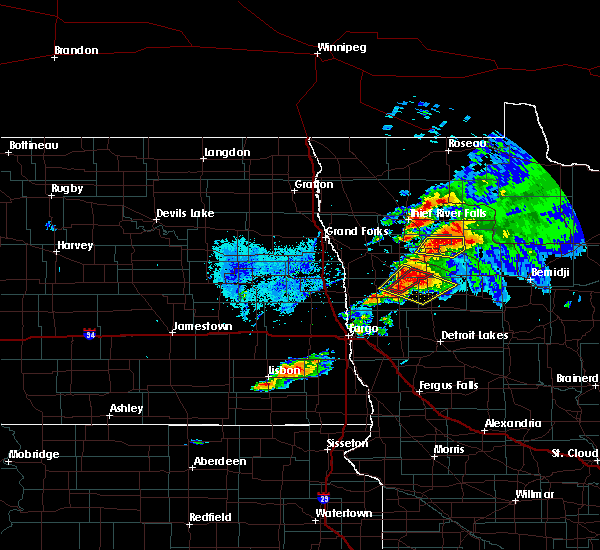 Radar Image for Severe Thunderstorms near Thief River Falls, MN at 8/13/2020 9:02 PM CDT