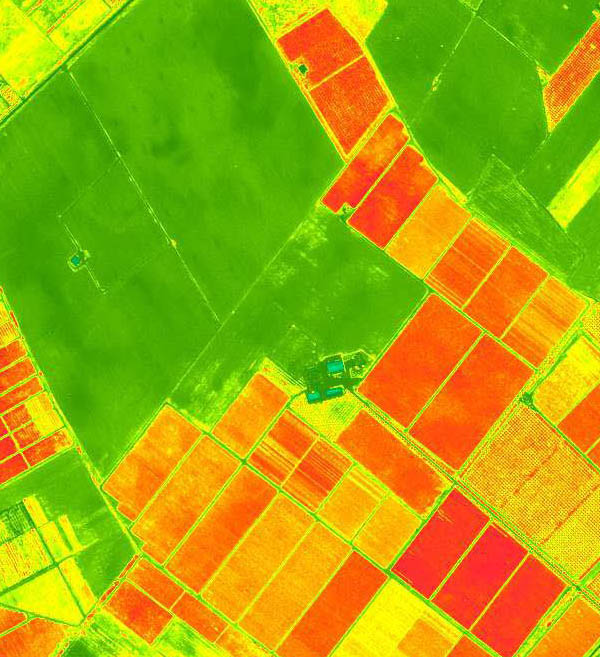 GeoEye-1 Satellite Map 2m Enhanced Vegetation Indices