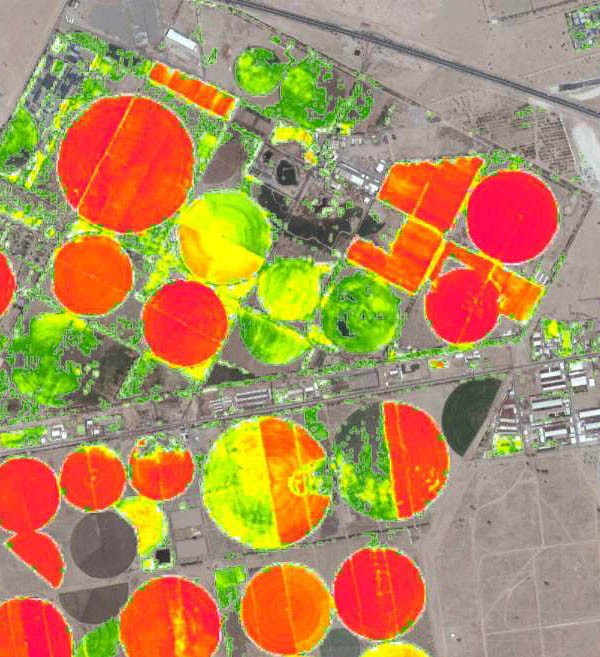 NVDI Index Pivot Agriculture Mapping