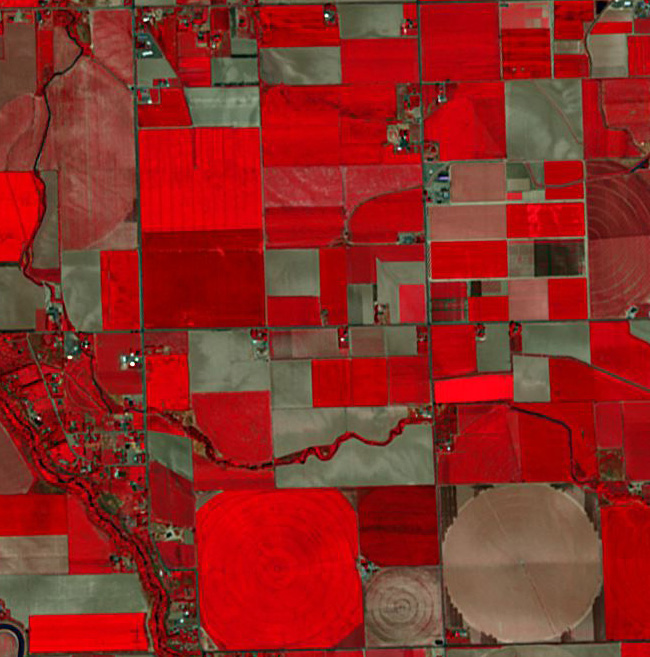 Dove Satellite Image Agriculture Fields Twin Falls Idaho