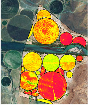 Agriculture Precision Mapping