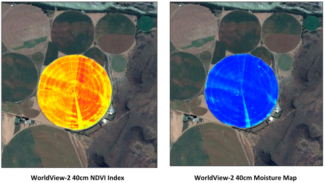WorldView-2 Satellite Moisture Map NDVI