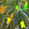 Pleiades Neo 3 Satellite Image Agriculture Field
