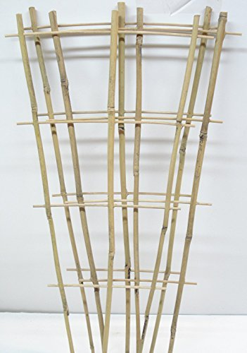 Natural Color Bamboo Trellis 24 Inches Tall Ebay