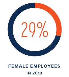 29% Female Employees in 2018