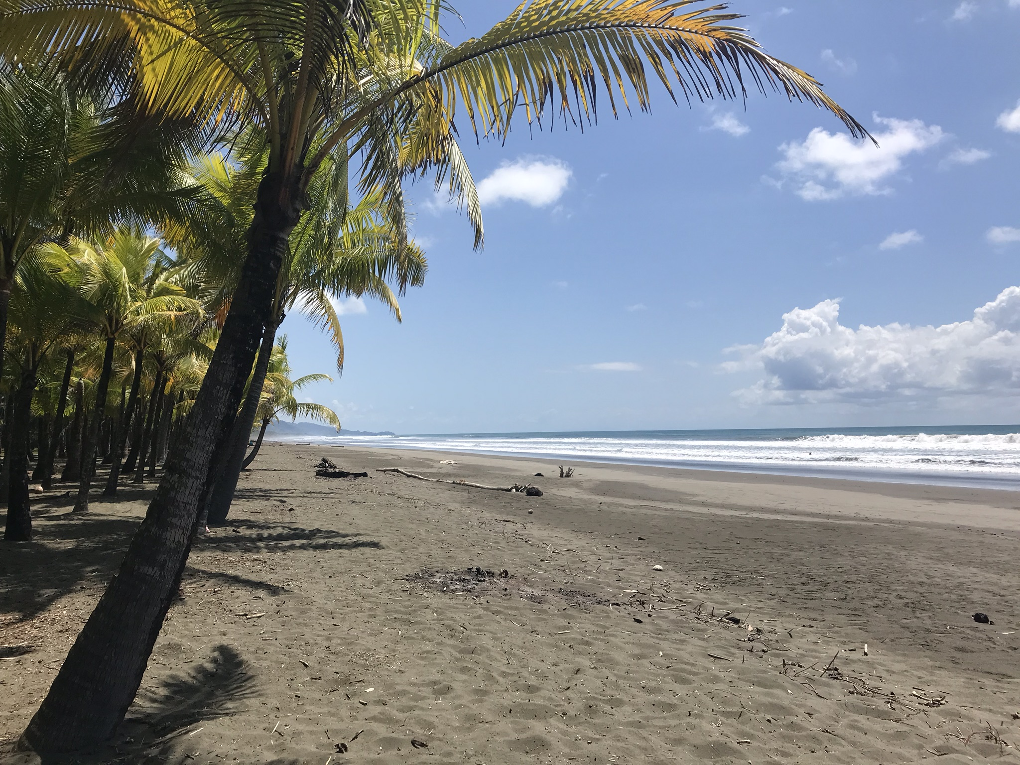 Beaches of the South - Casa Big Sur