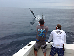 Sport Fishing Tours