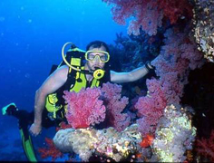 Scuba Diving Tour: Caño Island