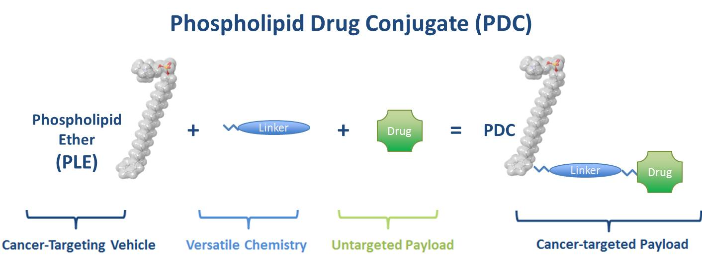 Phospholipid Drug Conjugates