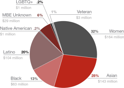 2020 Diverse Spend by Group
