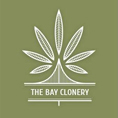 The Bay Clonery Logo