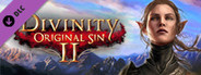 Divinity: Original Sin 2 - Divine Ascension System Requirements