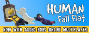 Human: Fall Flat System Requirements