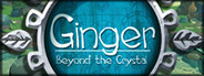 Ginger: Beyond the Crystal System Requirements