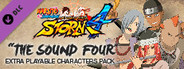 NARUTO SHIPPUDEN: Ultimate Ninja STORM 4 - The Sound Four Characters Pack System Requirements